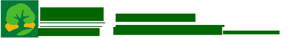 綠化苗木(mu)_園(yuan)林綠化_苗木(mu)價格_苗木(mu)報價-鄢陵興凱園(yuan)林